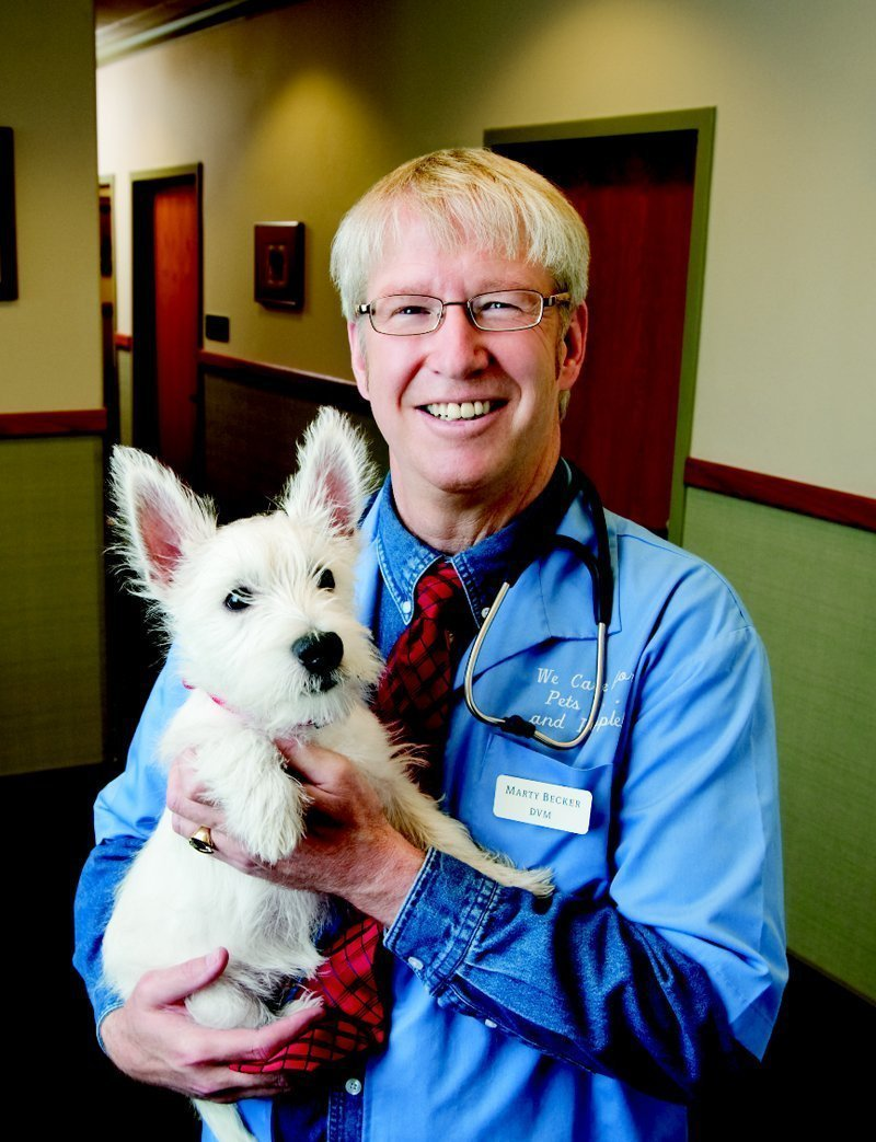 America's Favorite Veterinary Dr. Marty Becker votes Muffin's Halo For Blind Dogs on Top Product for Pets List!