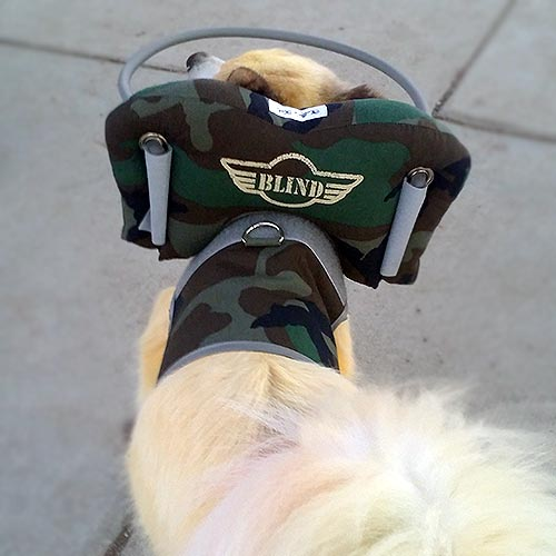 camo blind dog bumper