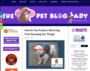 Protect your pup with an angel wing dog harness